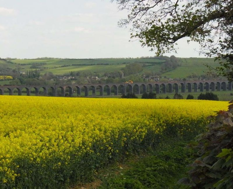 That viaduct